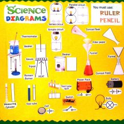 Science Diagrams For Class 8 Obd0 To Obd2 Distributor Wiring Diagram Display High School Classroom