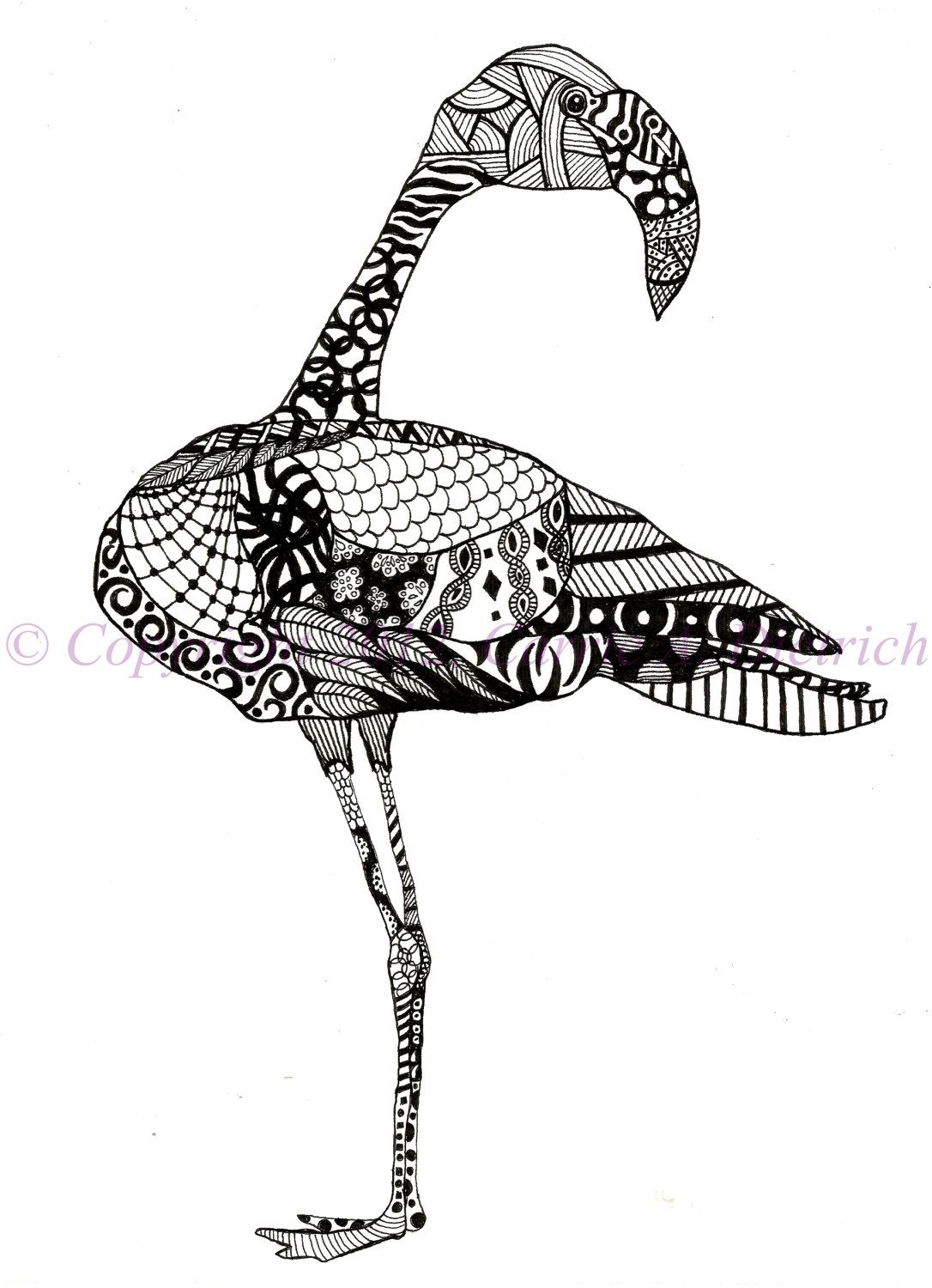 Black And White Art Pen And Ink Animals Flamingo Bird