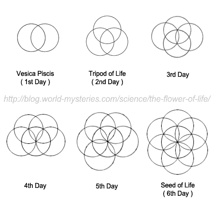 The flower of life holds a secret through which one can