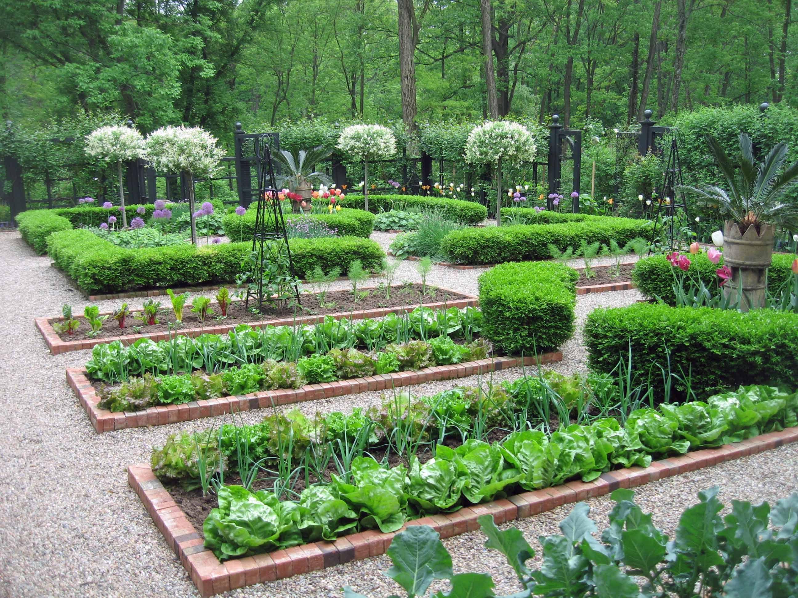 Organisation Et Structuration Du Potager Dream Garden Ideas