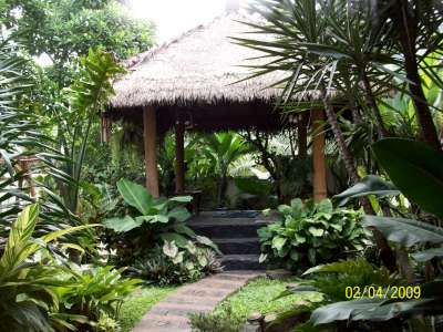 Garden Idea Pictures Bali Garden Design Ideas Gardening Tips