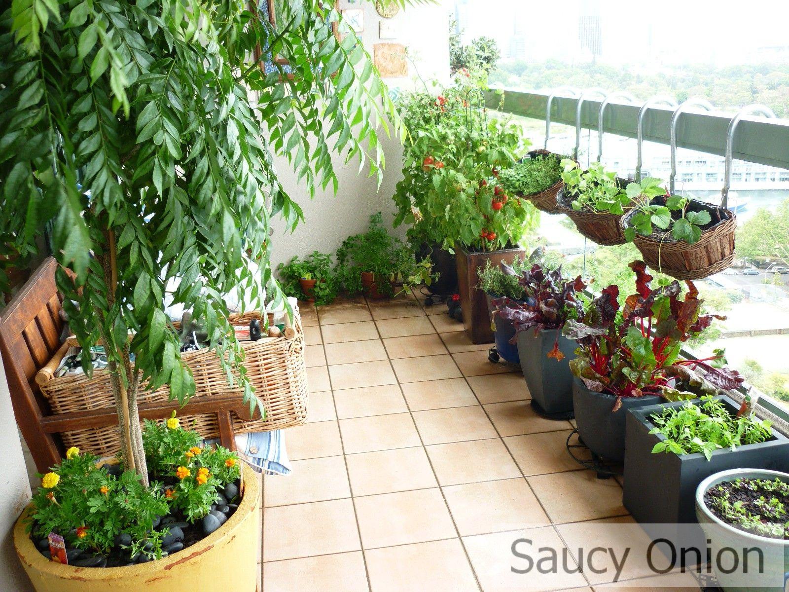 Apartement Apartment Balcony Vegetable Garden Decorating Ideas