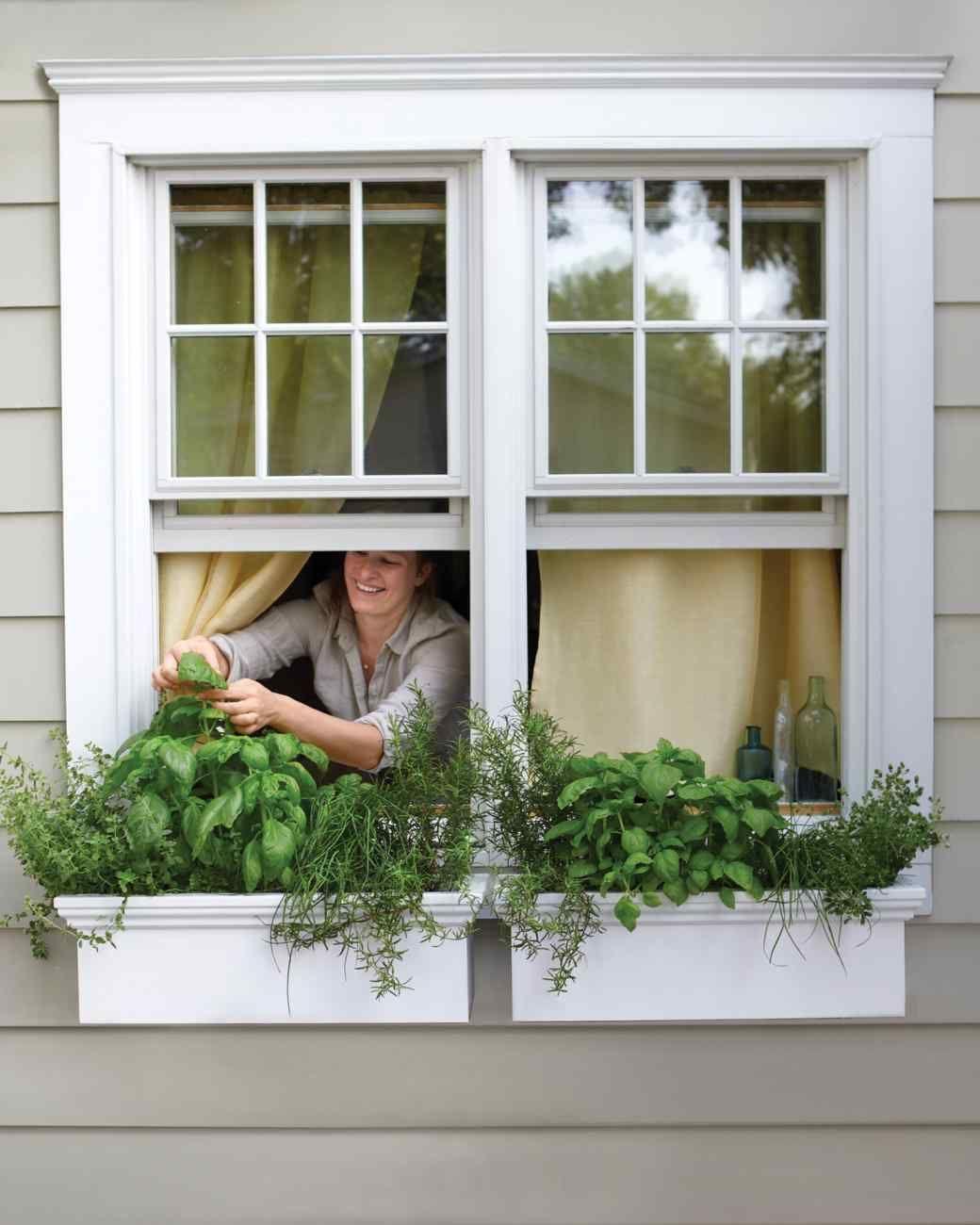 11 Creative Container Garden Ideas Gardens Window Boxes And