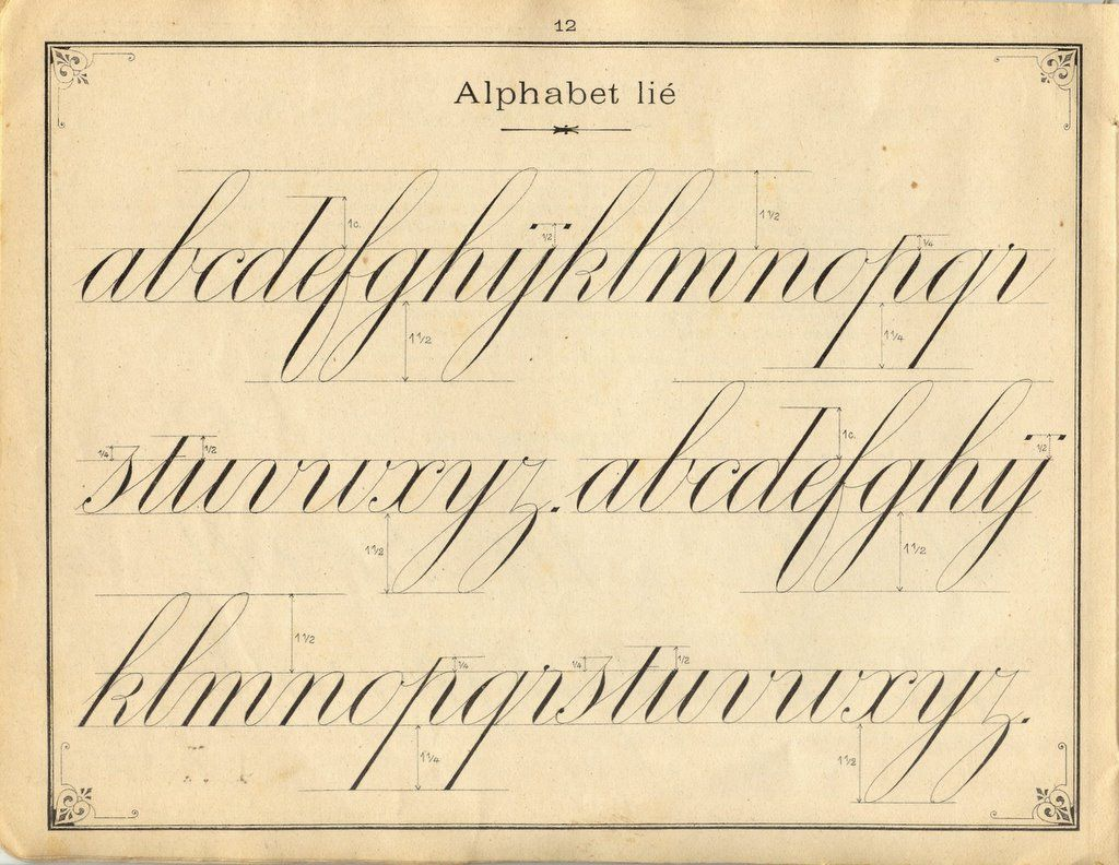 French Penmanship Lower Case Letters Fine I Like