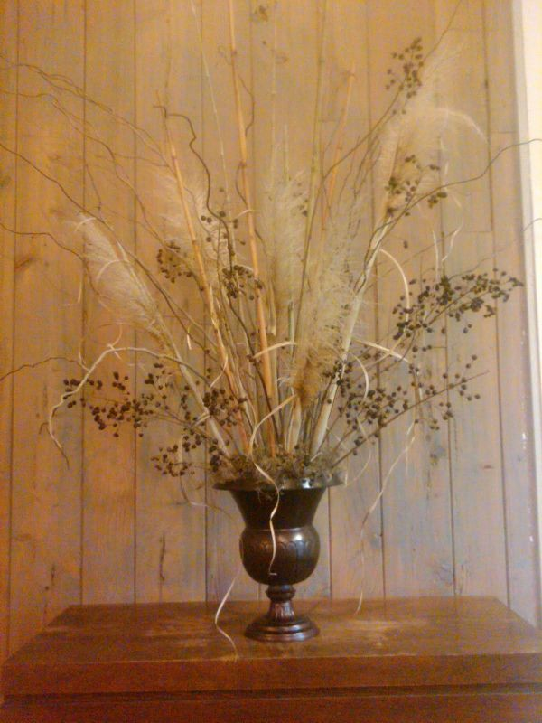 Dried Pampas Grass for Decoration