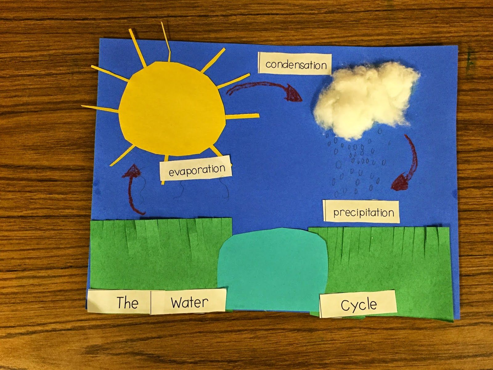 First Grade Fanatics Water Cycle