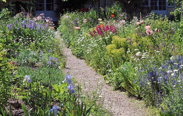Wildlife Garden Design & Landscape Gardening Flora Pinterest