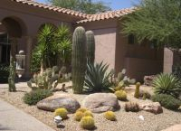 Beautiful Contemporary Desert Landscaping Idea With