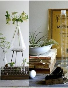 Beakers are the perfect vase kitchen or desk container  think  touch of nerd also test tube ideas home pinterest science equipment rh