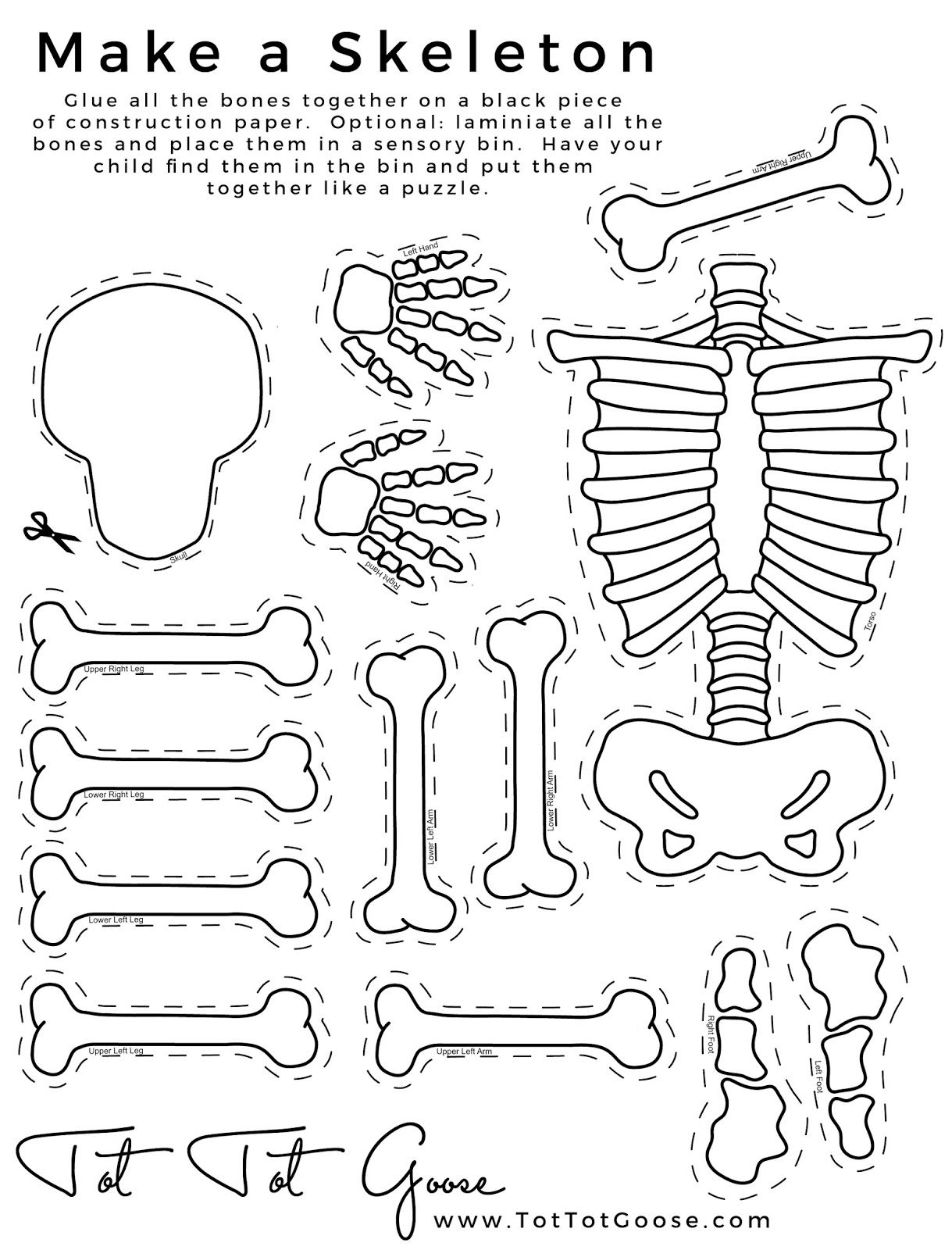 Skeleton Printable All About Me Theme Preschool Theme