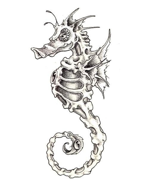 Seahorse Drawing 18