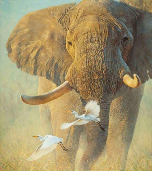 John Banovich Art Elephants