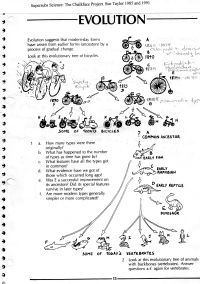 Worksheet on evolution, using bicycles as a metaphor ...