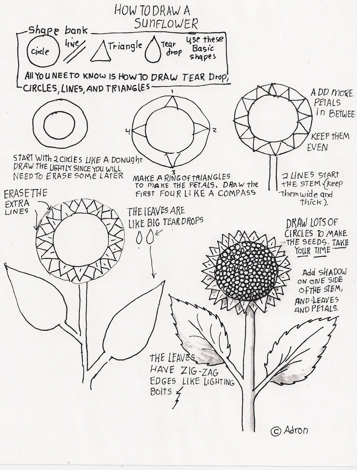28 Floral Design Basics Techniques Worksheet
