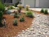 Drought Tolerant Landscaping Ideas - Inspiration - modlar ...