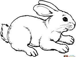 kaninchen zum ausmalen   Kinderzimmer   Pinterest ...