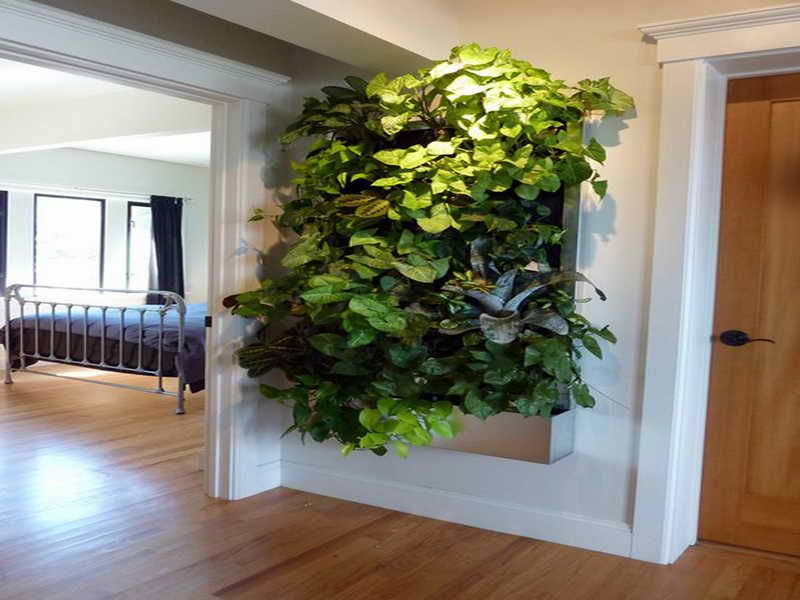 Indoor Living Wall Planters Ideas Lovelybuilding Com