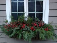 Holiday window box | Window Boxes and Planters | Pinterest ...
