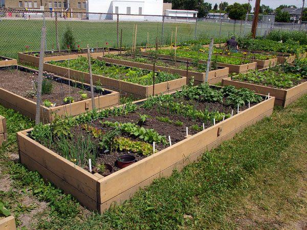 Garden Plot Idea 2 Gardening Inspirations Pinterest Plot