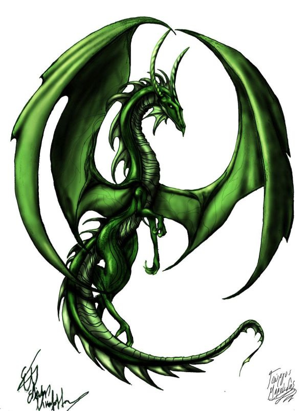 small earth dragon sweet fantasy