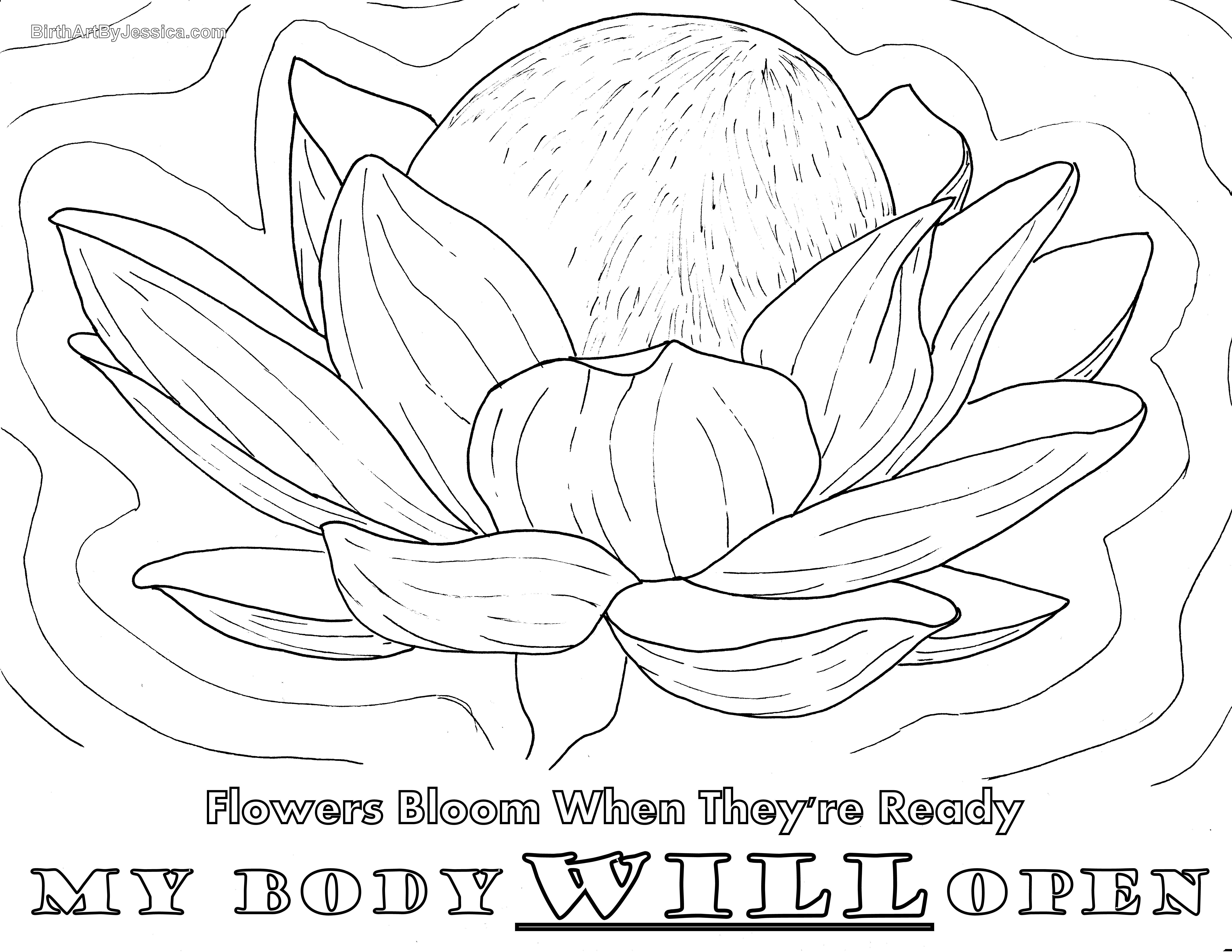 Birth Affirmation Coloring Page Free Printable My Body
