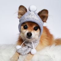 Dogs Winter Hat, Scarf Set! HANDMADE dog hats, dog caps