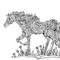 Widescreen Intricate Coloring Pages Animals For Mobile Hd Pics Adults Announcing Vidonya On