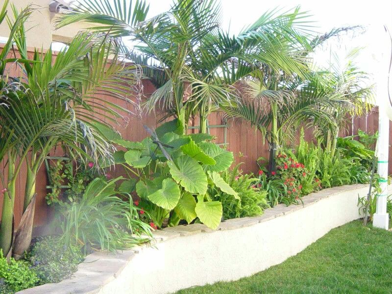 Screen Lower House Blockwork #tropical #landscaping Pinteres