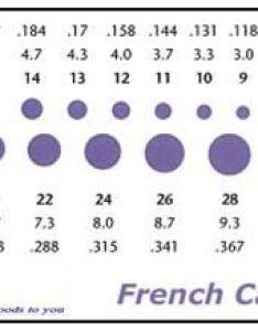 Catheter sizing chart also mersnoforum rh