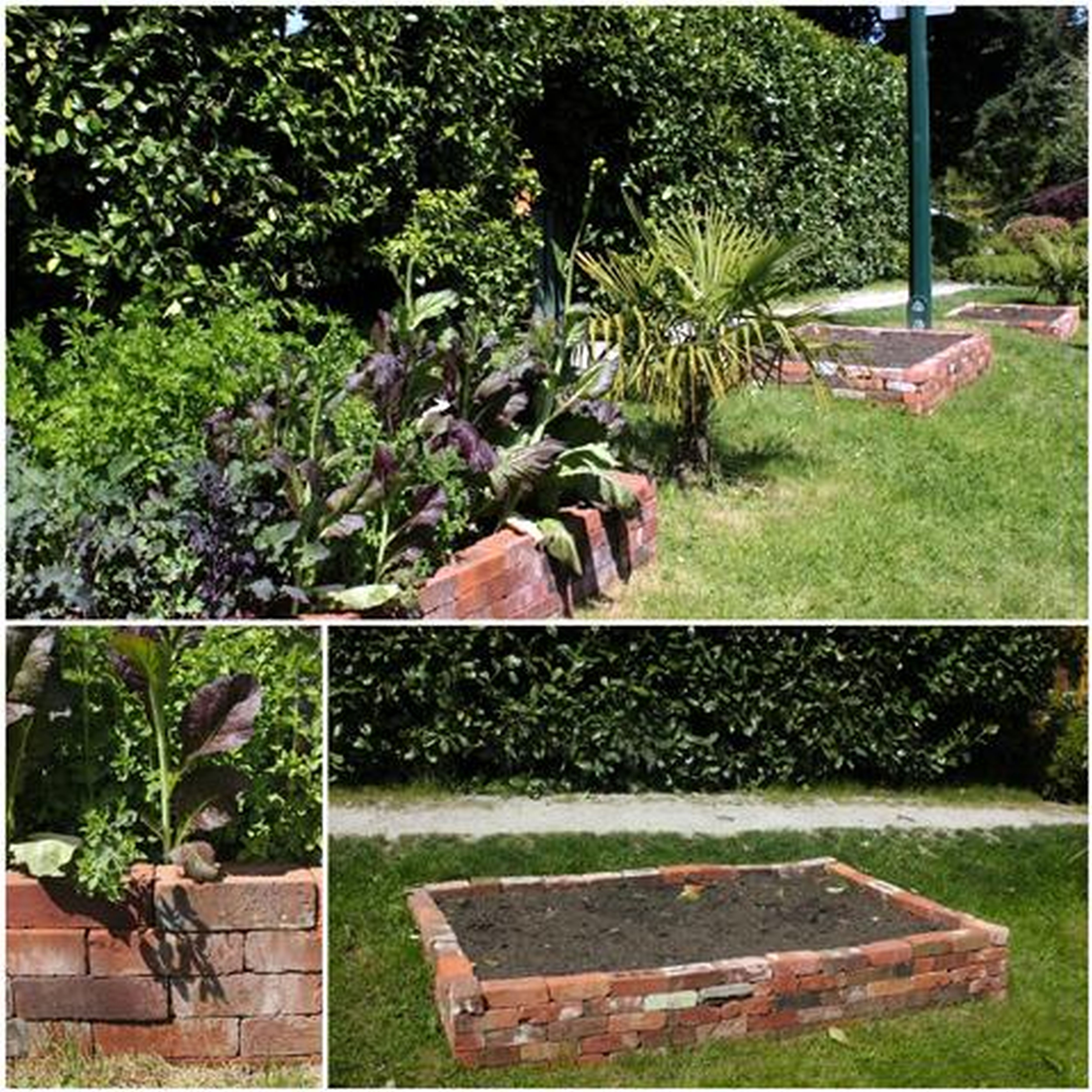 Recycled Brick Raised Vegetable Garden Bed Garden Small