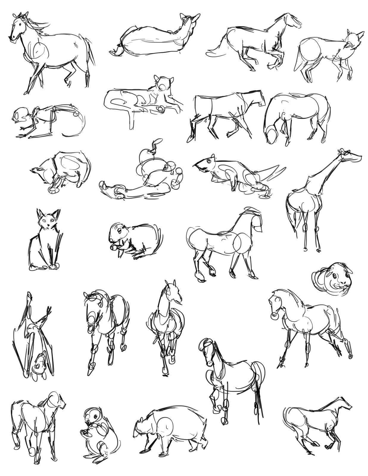Casey hunt gesture drawing tool animals character design <3