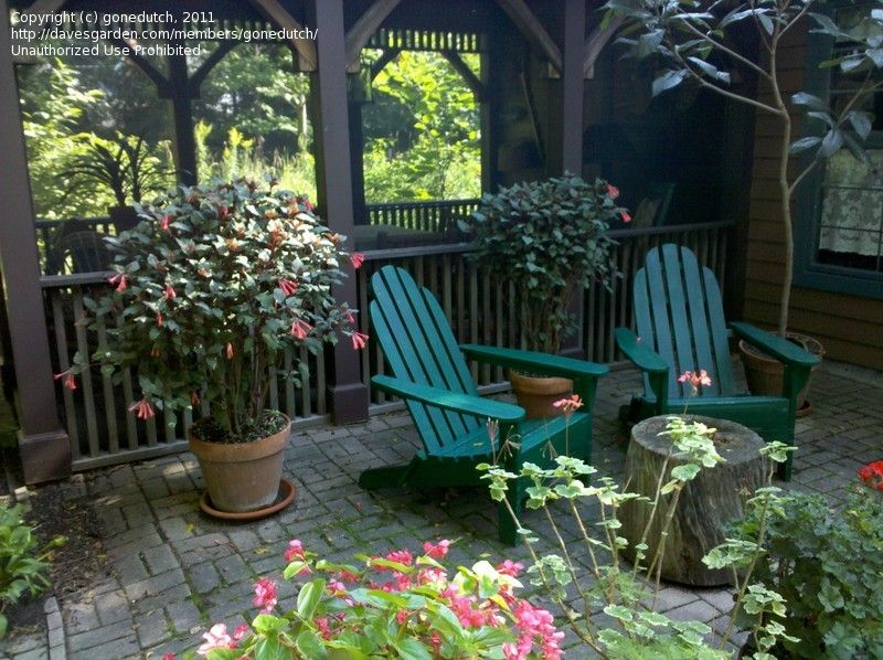 Home And Garden Ideas Decorating