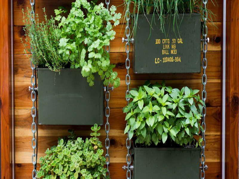 Vertical Herb Garden Design Garden Ideas Pinterest Gardens