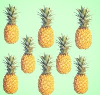 pineapples tumblr - Google Search | # P i n e a p p l e s ...