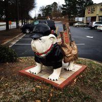 Dalton Carpet One, ATL Hwy. Athens GA   Athens bulldog ...
