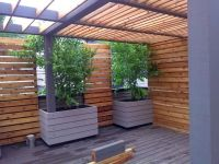 Pergola | Cedar Oiled and Painted | Privacy Screen ...