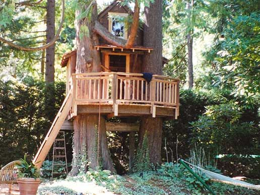 50 Kids Treehouse Designs Treehouse Tree Houses And Treehouses