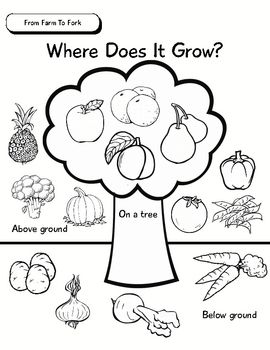 Best 25+ Fruits and vegetables pictures ideas on Pinterest