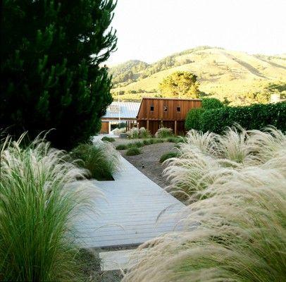 Blasen Landscape Architecture Compound Pinterest Gardens