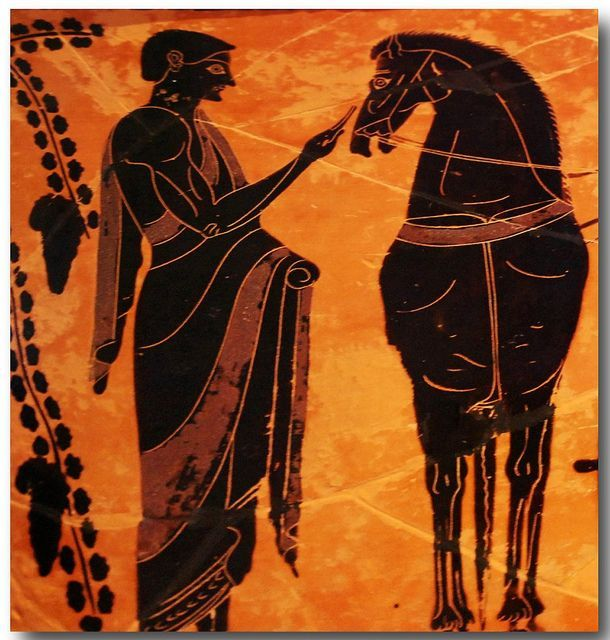 Image result for ancient greek horse