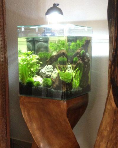 Aquastyle 24 EHEIM auf Holz Säule - Design und Lifestyle ...