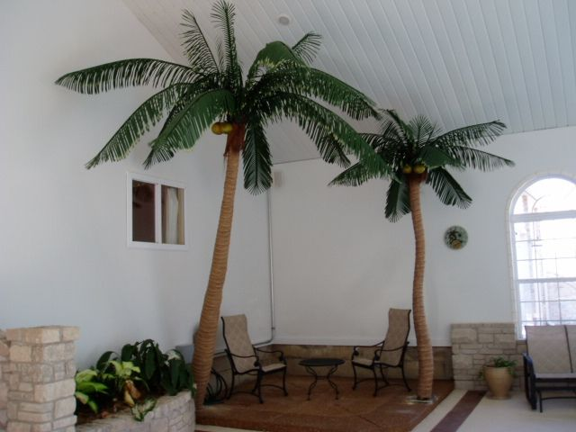 Indoor Artificial Palm Trees 2