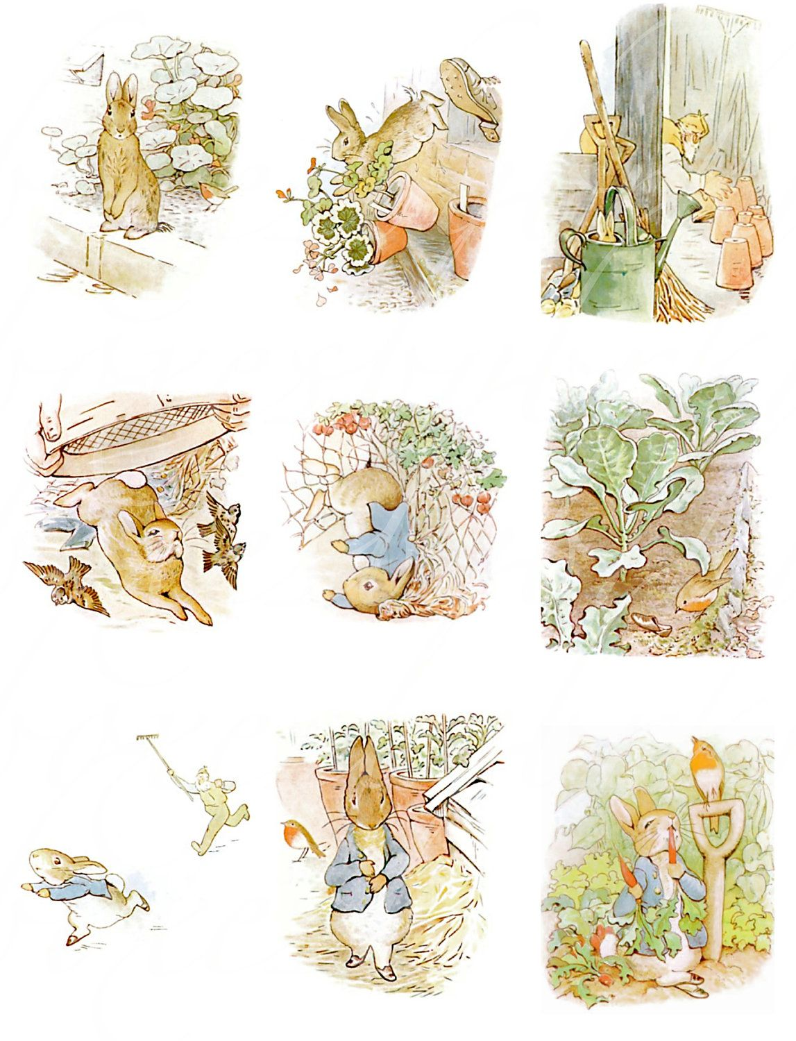 24 Antique Peter Rabbit Images From The Tale Of Peter