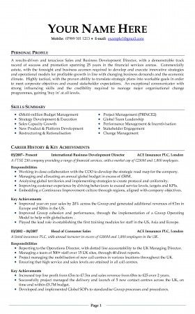 resume examples uk template - Uk Cv Examples