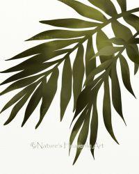 green palm leaf wall stickers | Palm Leaf Wall Art Print ...
