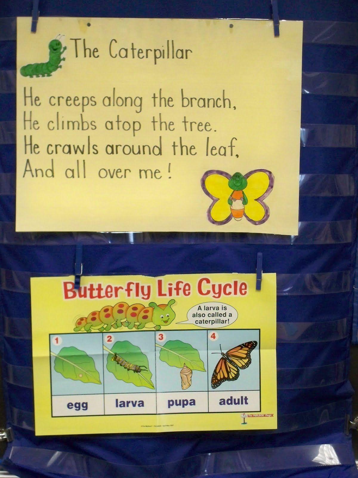 First Grade Best Butterfly Fun Cute Poem