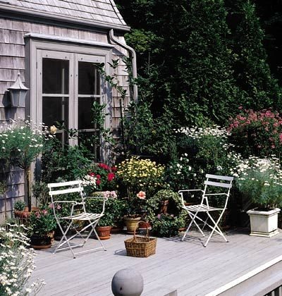 A Lush Container Garden Brings Life To The Sedate Tones Of This