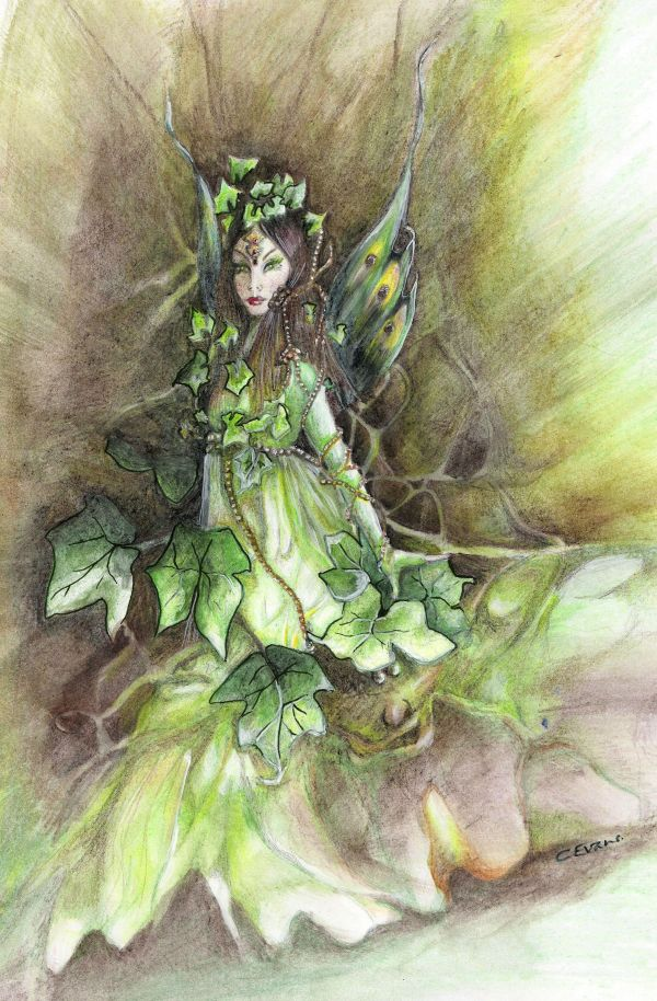Title Irish Ivy Fae Artist Caroline Evans Fairies