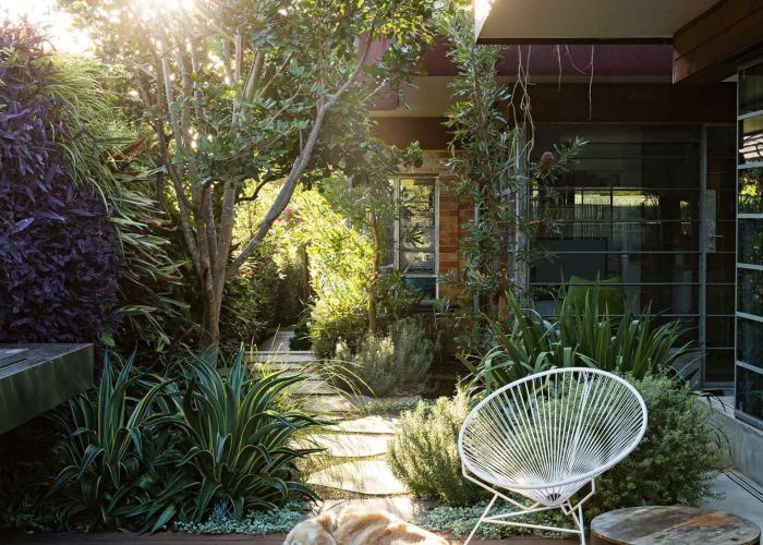 Garden ideas  seamless indoor outdoor courtyard designed by peter fudge photography jason busch also