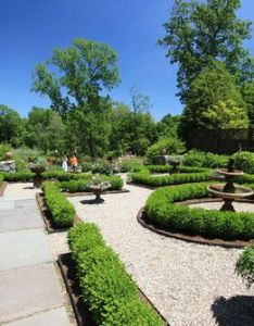Formal privet hedge design pictures remodel decor and ideas page also rh pinterest